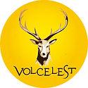 rond_jaune_volcelest-01.jpg