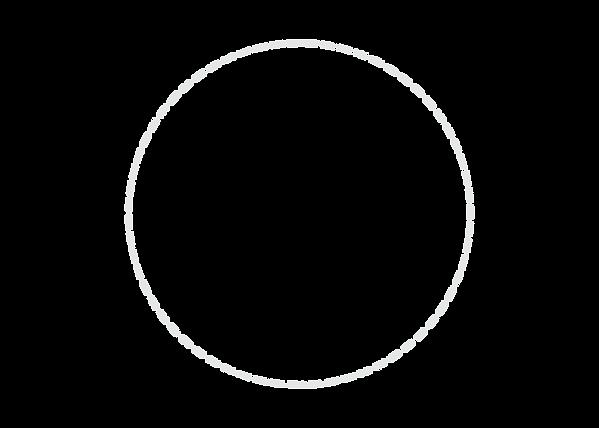 dashed circle.png