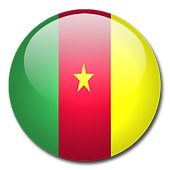 cameroon flag.png