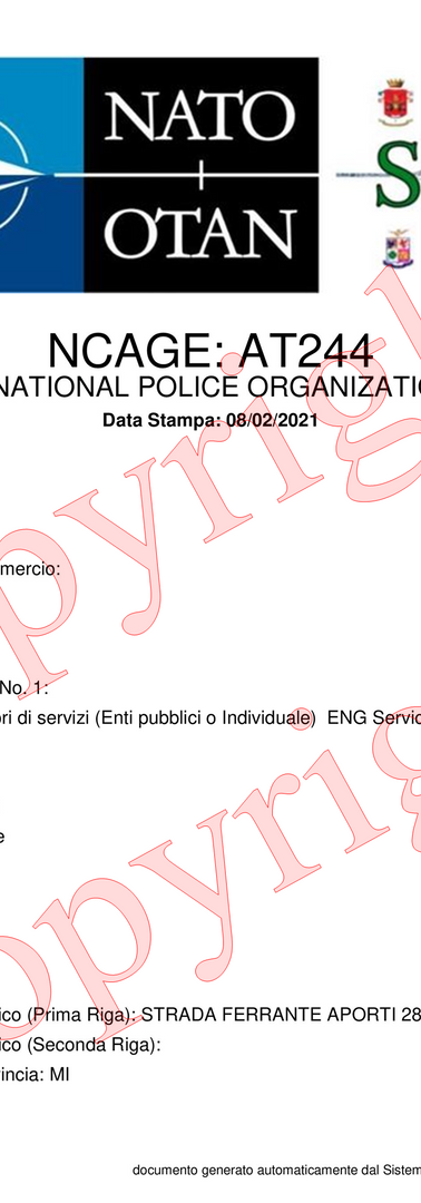 IPO NATO Code.png