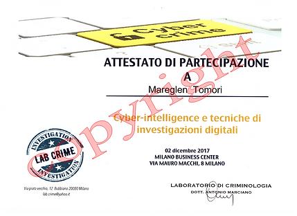 TM cyber Intelligence.png
