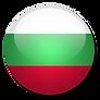 BG Flag.png
