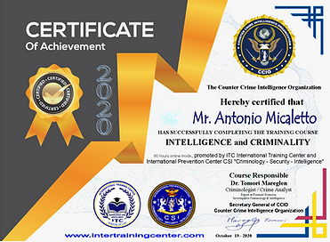 Course CCIO Intelligence Micaletto.png
