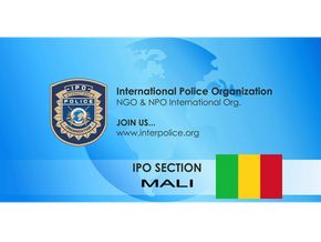 IPO Section Mali activity