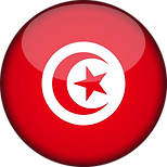 tunisia flag.png