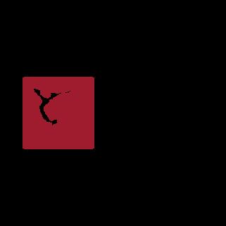 Sandy Springs Gymnastics