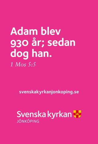 Annons_SvKyrkan_Stortavla_1185x1750_nov1