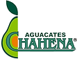 AGUACATES CHAHENA.png
