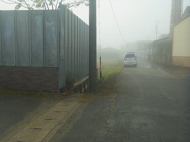 霧でよくみえませんが、見違える程綺麗です。