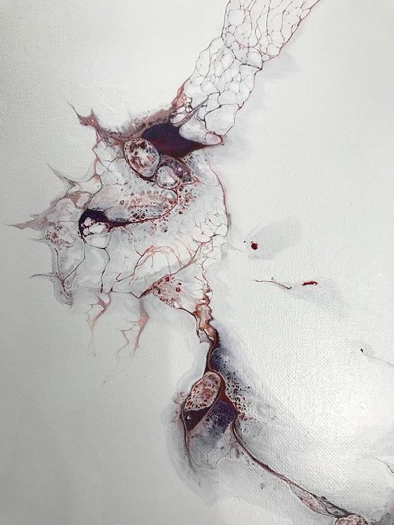 Fall seeds.jpg