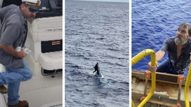 62-Year-Old Sailor Vanishes at Sea, 43 Hours Later He's Found Alive