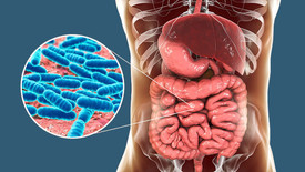 Leaky Gut: What is it? Is it real? And 11 Common Symptoms to Look Out For