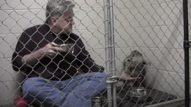 Caring Veterinarian Shares Meal with Terrified Rescue Dog to Help Her Relax(ONVideo)