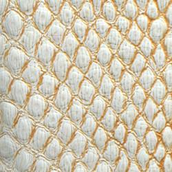 White & Gold Lizard