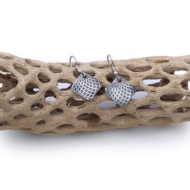 Sterling Silver Earrings -Longitudes