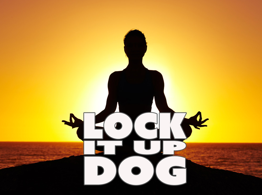Paul Jacob Evans | Lock it up Dog