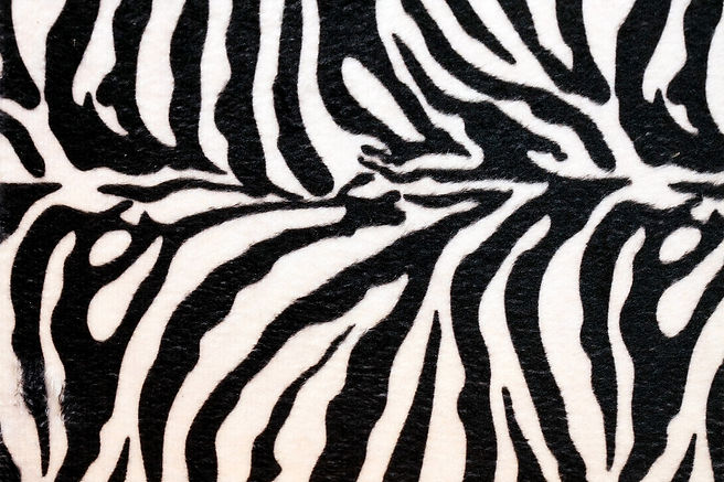 zebraprint.jpeg