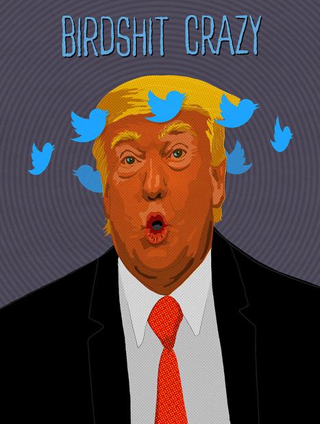 birdshit-crazy_800_1058.jpg
