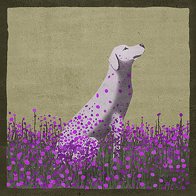 purpleflowers_400_400.jpg