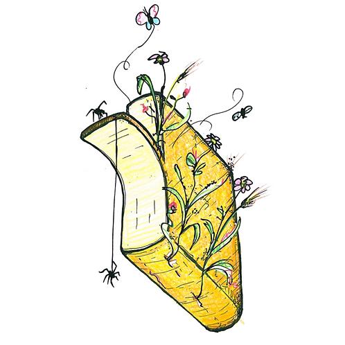 Raclette wilde kruiden