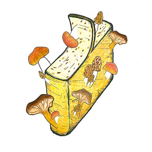 Raclette met Bos Paddestoelen