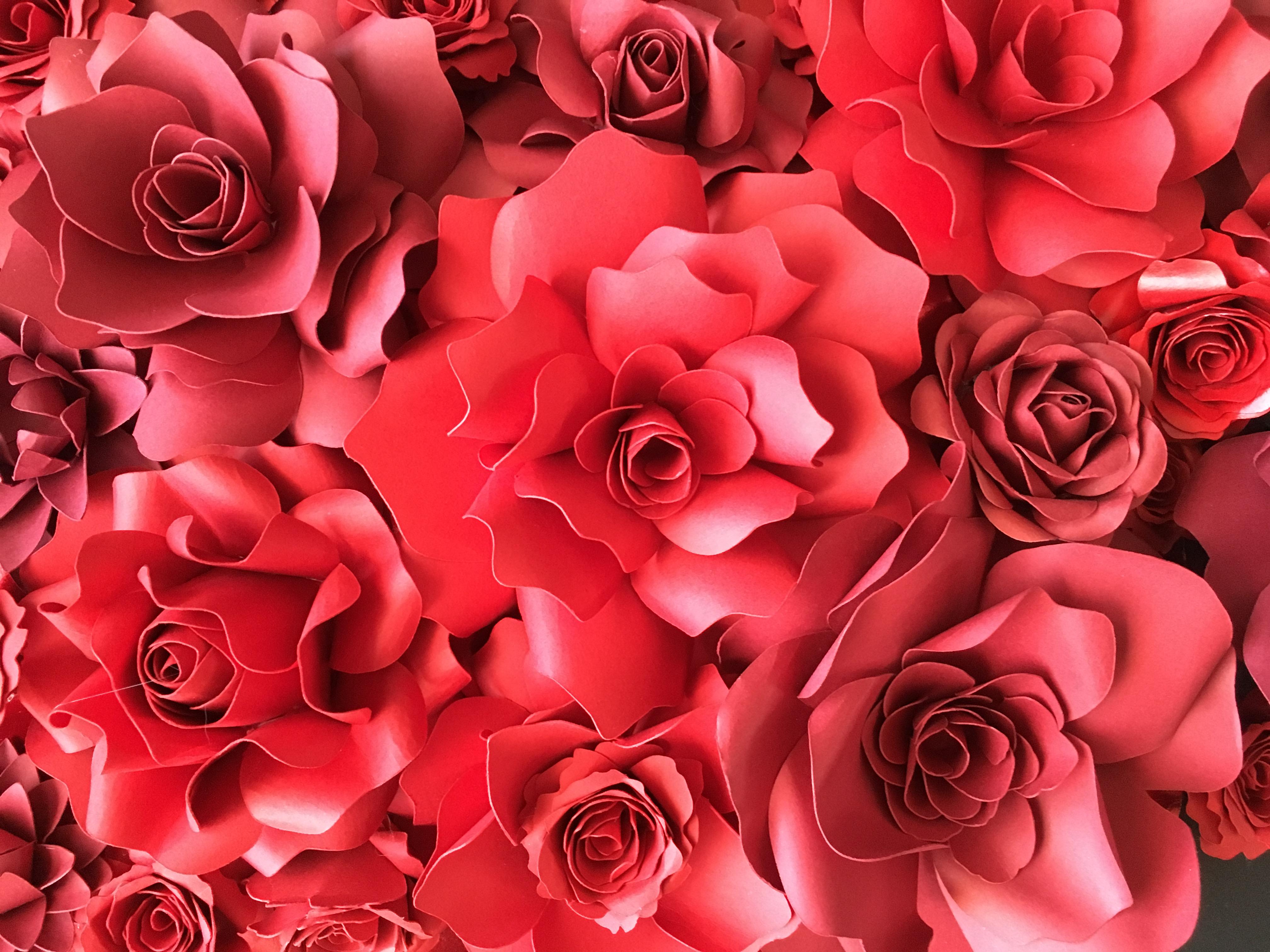 paper flowers fleurs en papier
