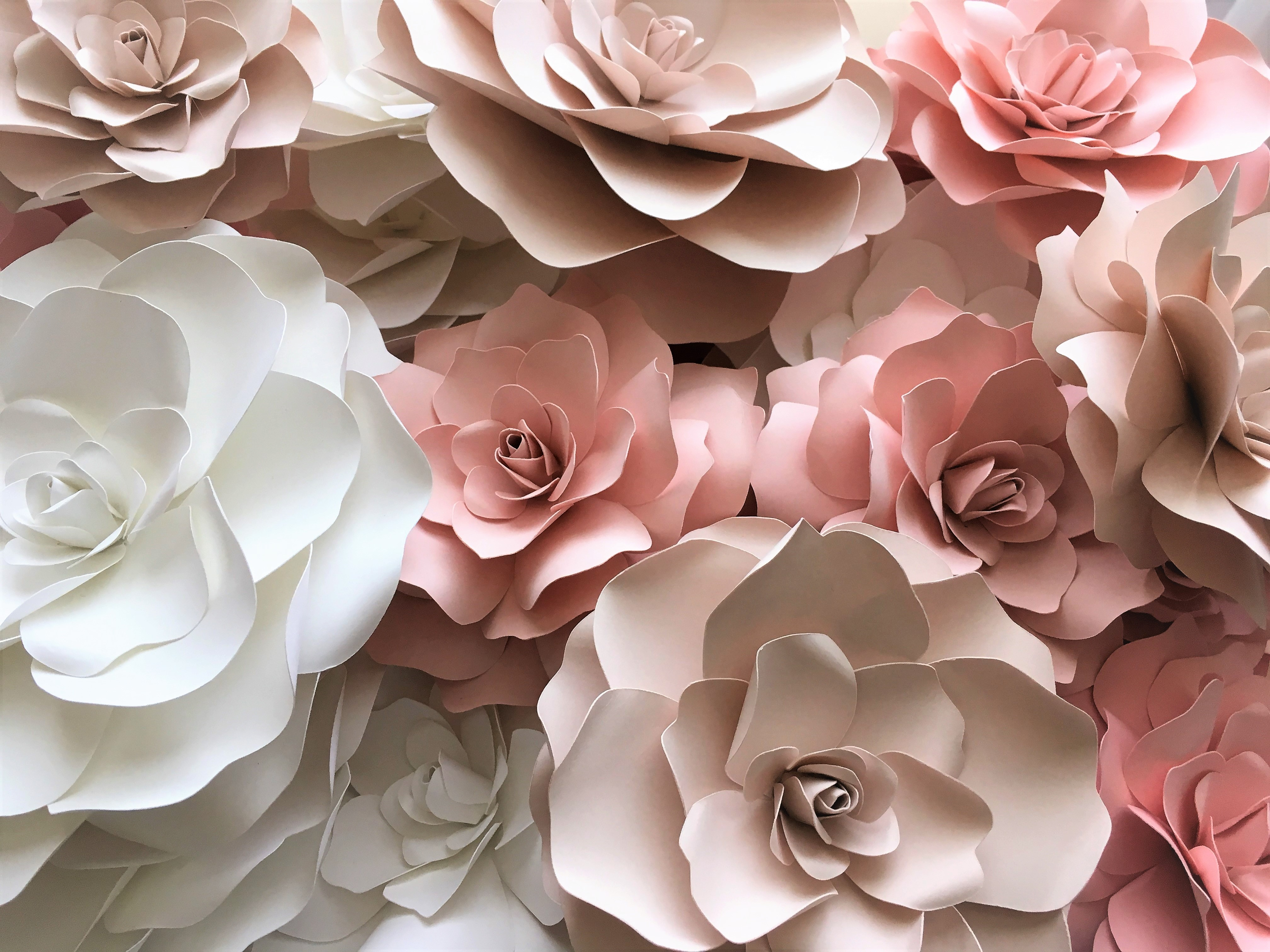 pink blush white paper flowers