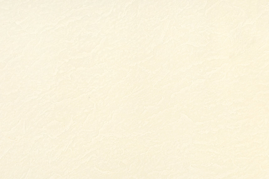 ivory texture_web_wix.jpg