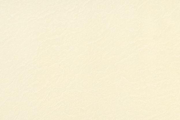 ivory_background_wix.jpg
