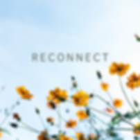 Reconnect Image March 2020.png
