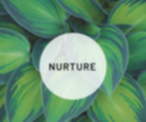 Nurture Feb Retreat (2).png