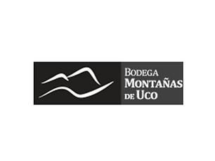 MONTAÑAS DE UCO.png