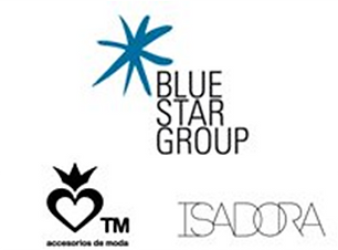 BLUE STAR GROUP.png