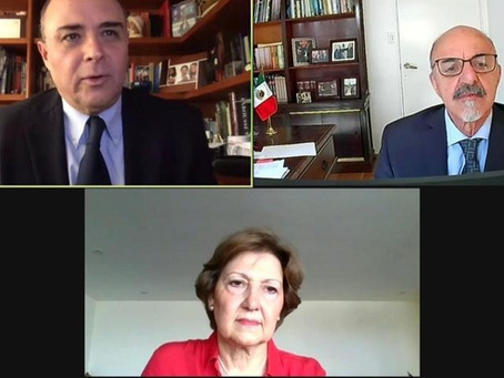 Cecilia Bilesio, Directora Ejecutiva de la CCMA, Compartió Ponencia con el Embajador Carlos Tomada