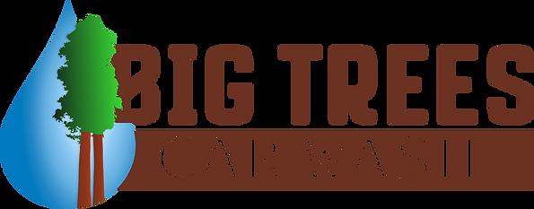 Big Trees Car Wash