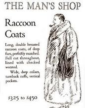 Racoon coats
