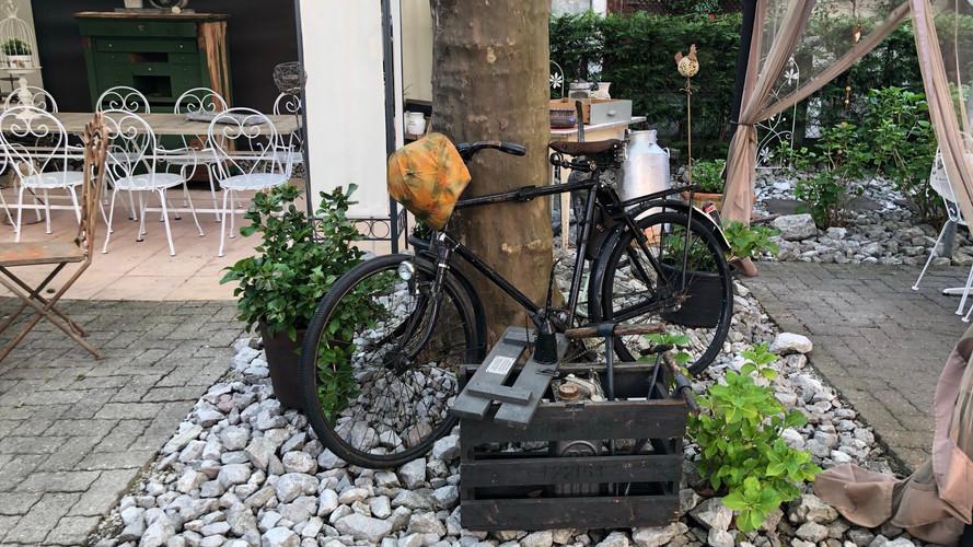Steingarten Kanönli Thun.jpeg