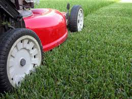 Clean Green Britol lawn moving