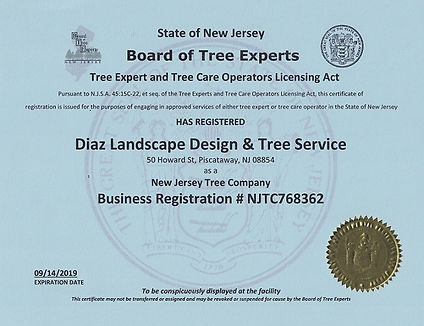 Registered Tree Service, Picataway, NJ