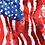 Thumbnail: Michelle's Stars & Stripes Adult Panel - Cotton Lycra
