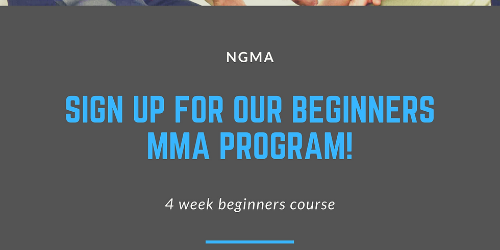 Beginners MMA Course