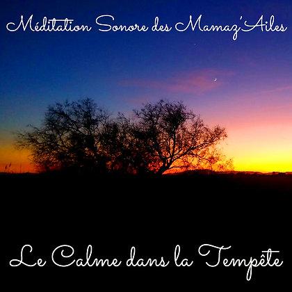 """Méditation Sonore """"Le calme dans la tempête"""""""