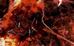 heat_shot_05.jpg