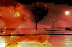 03 Heat_shot_16mm_12min_2007.jpg