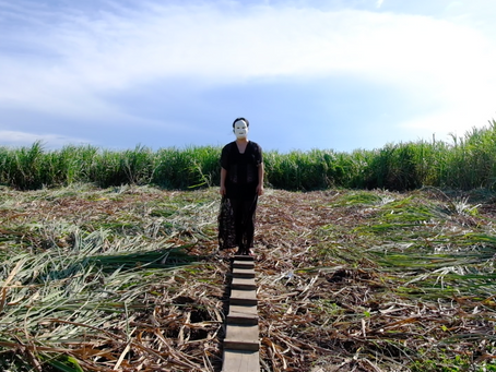 Shooting in Bacolod _ sugarcane field, Philippines