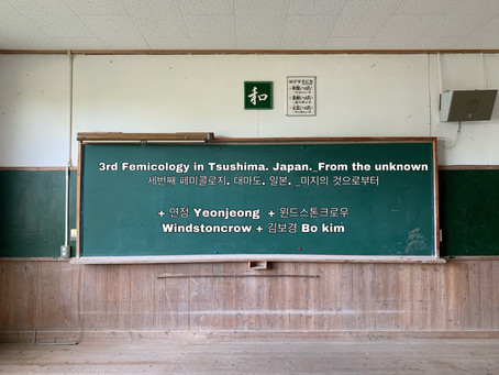 3rd Femicology in Tshushima_From the unknown, Japan. 2019.08.10.