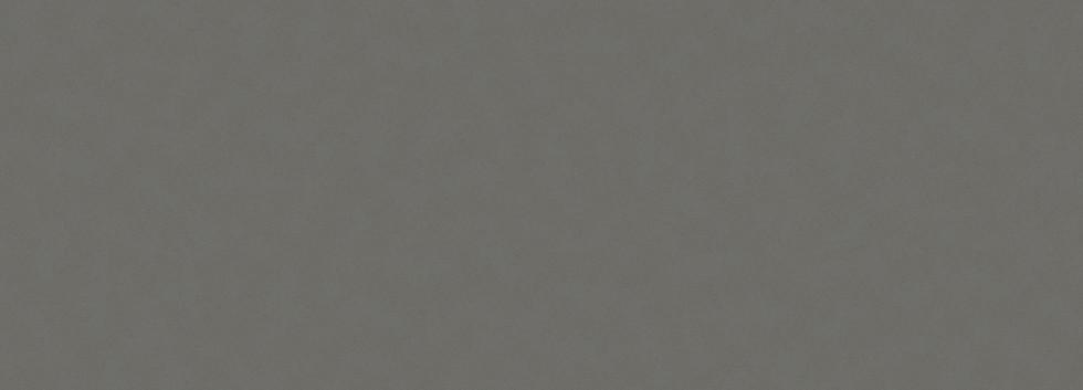 gris-expo.jpg