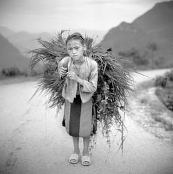 Jeune fille Hmong Ha Giang Juin 2009