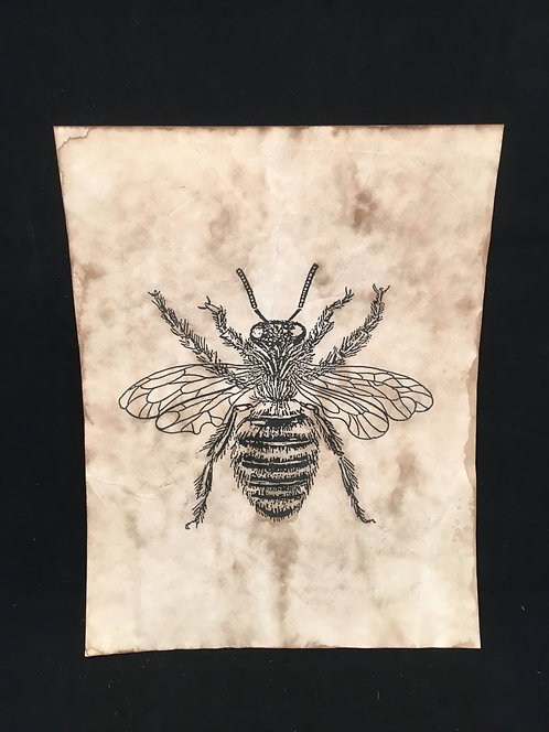 Bee Archive
