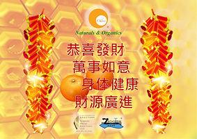 Odore - 2020 CNY Greetings 28% ... (12 J